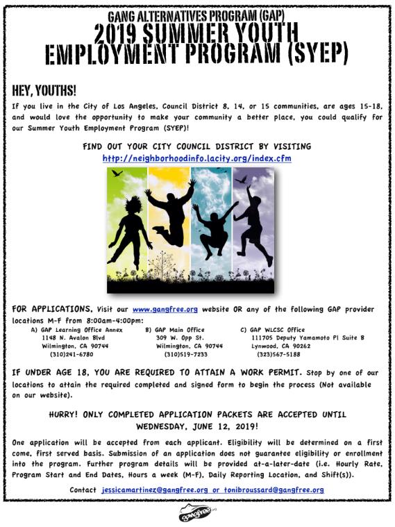 2019 Summer Youth Employment Program